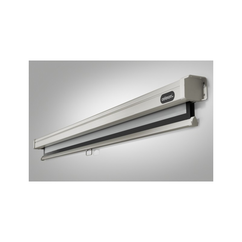 Pantalla de proyección de techo de 220 x 124 cm manual de PRO