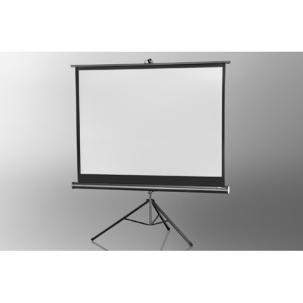 Projection screen on foot ceiling Economy 211 x 160 cm