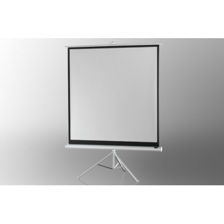 Ecran de projection sur pied celexon Economy 219 x 219 cm - White Edition