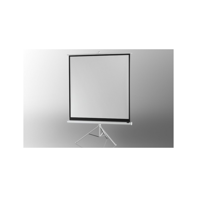 Projection screen on foot ceiling Economy 219 x 219 cm - White Edition - image 12065