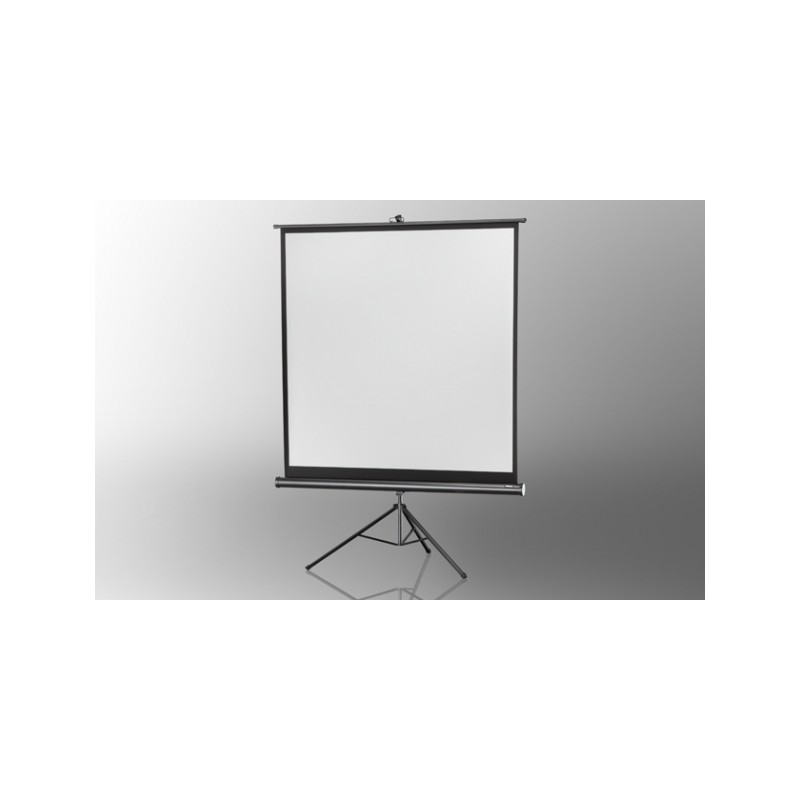 Projection screen on foot ceiling Economy 244 x 244 cm - image 12080