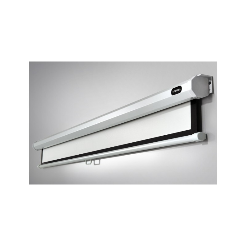 Manual Economy 220 x 165 ceiling projection screen - image 12159