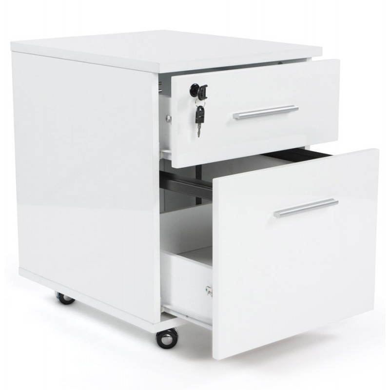 Florida office (white) lacquered wooden subwoofer - image 21180