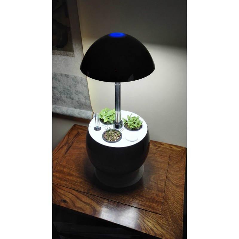 Giardiniere della coltura idroponica per la cultura interna automatica POME (piccolo, nero) - image 23794