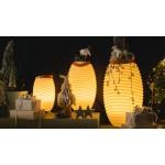 Lampe LED Eimer Champagner schwanger Lautsprecher Bluetooth KOODUU Synergie 65PRO (weiß)